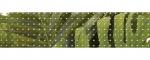 mosaic91f86c36b8c73be71014e5782cef0780.j